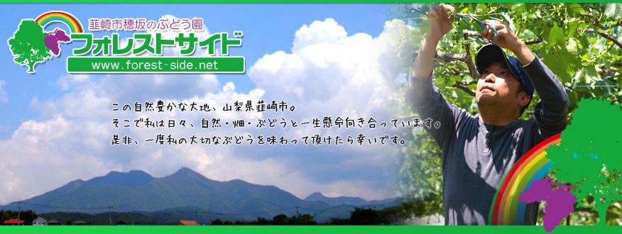 山梨県 韮崎市 フォレストサイド 横森ぶどう園 ぶどう 宅配 巨峰 ピオーネ デラウエア